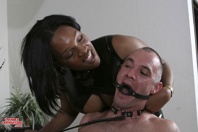 madison2x Get Out Your Whips and Ball Gags, TranSexDomination.com is Here!