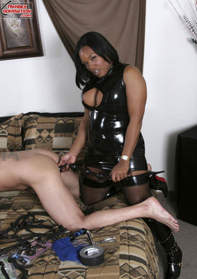 madison3x Get Out Your Whips and Ball Gags, TranSexDomination.com is Here!